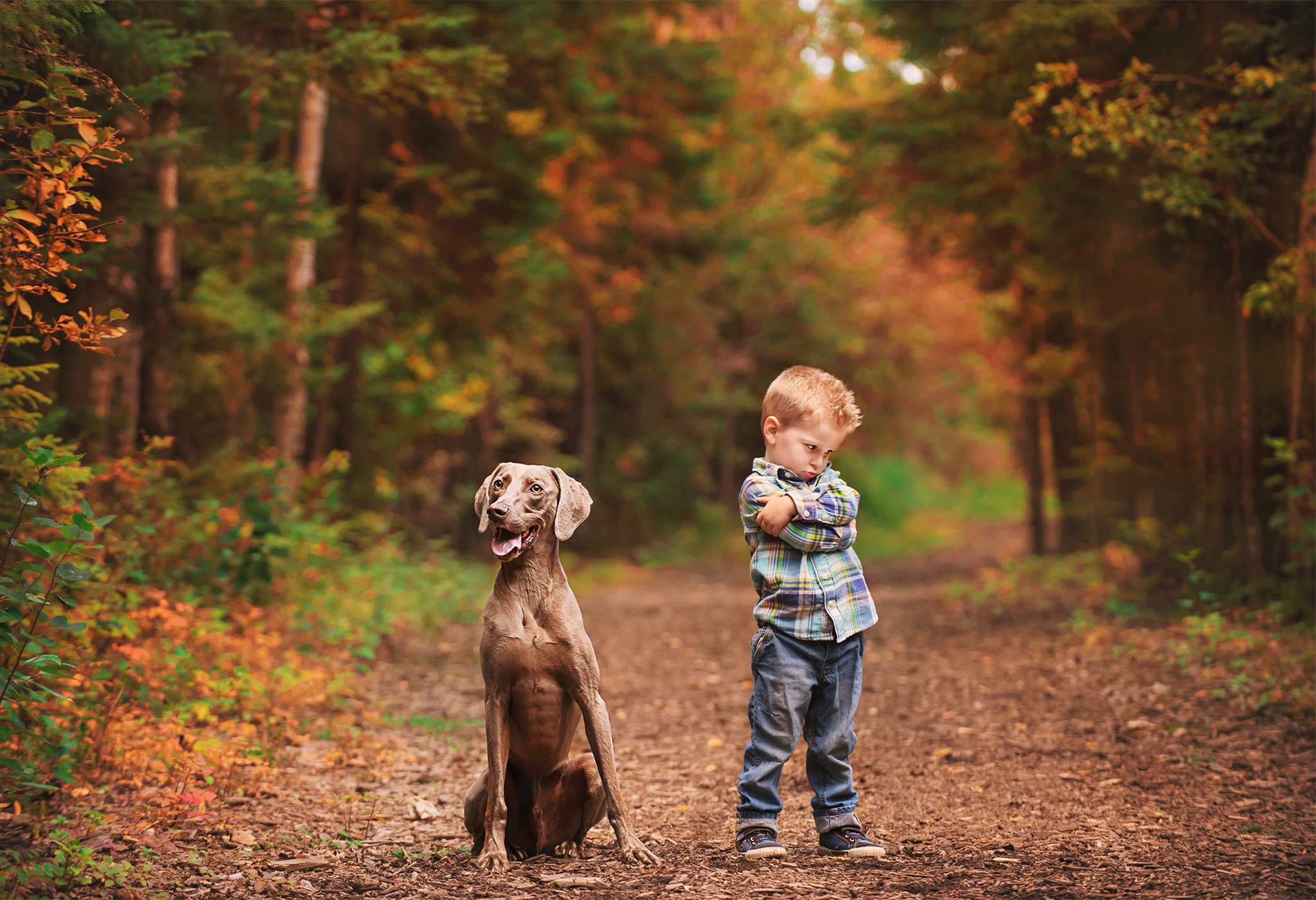 A boy and his dog have a memorable moment in YMM and it's captured in photography to treasure forever